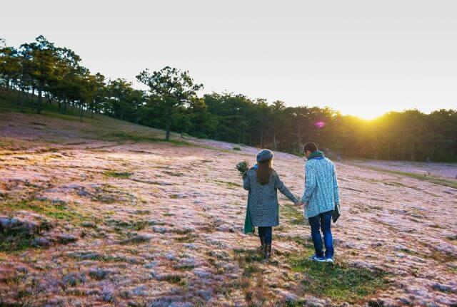 Đồi cỏ hồng - địa điểm sống ảo Đà Lạt