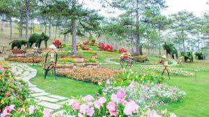 Hoa muôn sắc màu tại thung lũng tình yêu địa điểm sống ảo Đà Lạt