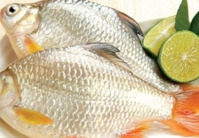 3 cách chọn cá tươi mà bất cứ ai mua cá cũng phải biết